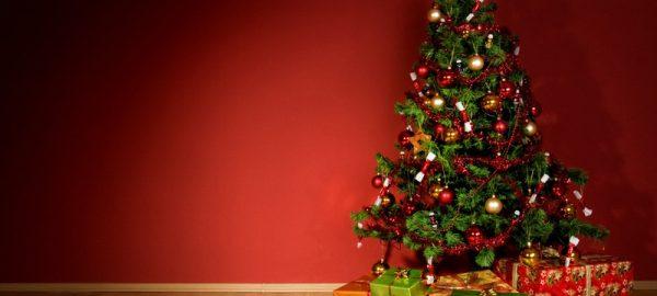 Noël 2019 chez Xeno